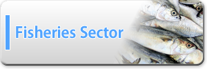 fisheries_sector